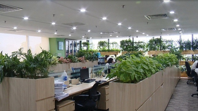 Ý tưởng setup văn phòng